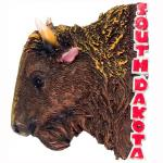 SOUTH DAKOTA BUFFALO POLY MAGNET