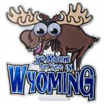 WYOMING GOOGLY-EYE MOOSE MAGNET