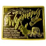 WYOMING EDUCATIONAL MAGNET