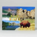 "SOUTH DAKOTA 4-VIEW 2.5"" X 3.5"" MAGNET"