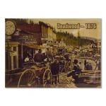"DEADWOOD 1876 2.5"" X 3.5"" MAGNET"