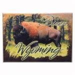 "WYOMING BUFFALO 2.5"" X 3.5"" MAGNET"