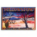 YELLOWSTONE PHOTO 3-D ACRYLIC MAGNET