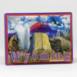 WYOMING LINE 3-D ACRYLIC MAGNET