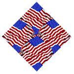 USA FLAG BANDANNA