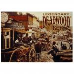 DEADWOOD 1876 POSTCARD