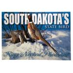 SOUTH DAKOTA PHEASANT IN THE SNOW POSTCARD