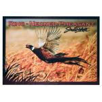 SOUTH DAKOTA RING-NECKED PHEASANT POSTCARD