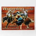 WYOMING COURTSHIP POSTCARD