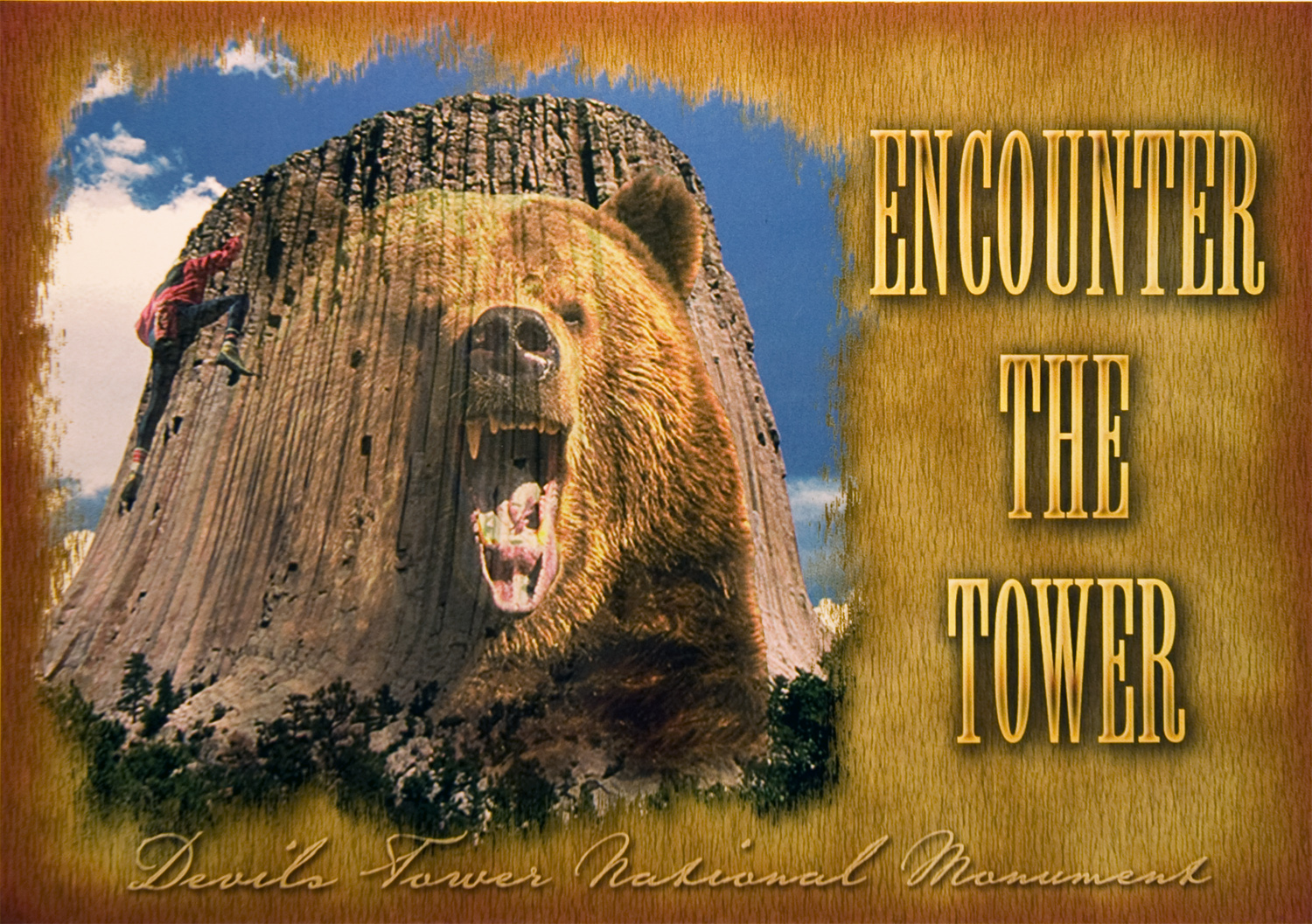 DEVILS TOWER BEAR POSTCARD