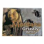 "MONTANA GRIZZLY BEAR 2.5"" X 3.5"" MAGNET"