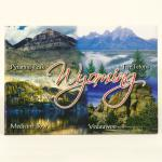"WYOMING 4-VIEW 2.5"" X 3.5"" MAGNET"