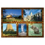 "WYOMING MULTI-VIEW 2.5"" X 3.5"" MAGNET"