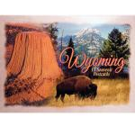 WYOMING POSTCARD PACKET (12 CARDS)